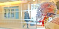 How to Rewire Your Brain to Work More Efficiently